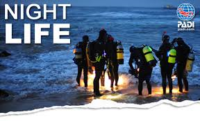 Guided Night Dives (for certified divers only)