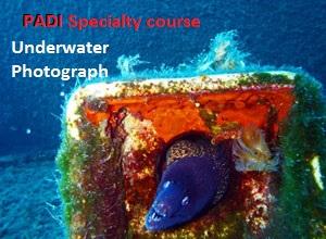 PADI Underwater Photography