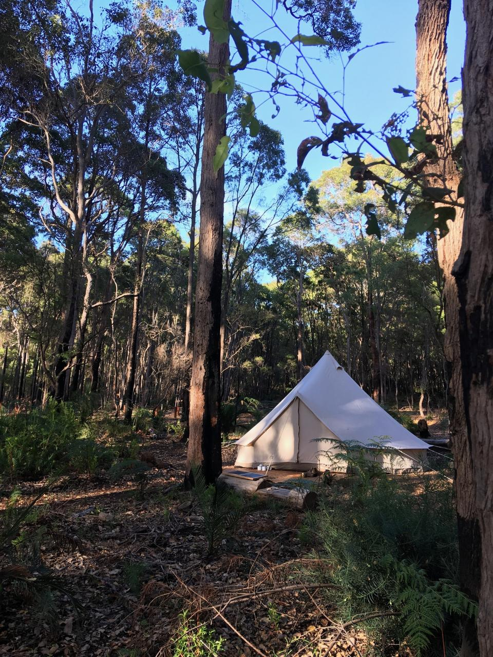 Wild Goose Camp-out!  4 meter Luxury Furnished Canvas bell tent for two. ONLY 6 AVAILABLE.