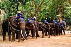 Mae Sa Elephant Camp, Orchid Farm and Long Neck Village