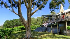 Small Batch Experience Adelaide Hills