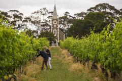 Barossa - The Pinnacle Ultimate Wine Tour