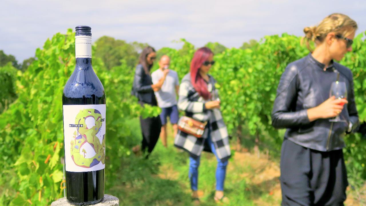 McLaren Vale - Private & Flexible Wine Tour