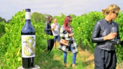 McLaren Vale - Private & Flexible Wine Tour
