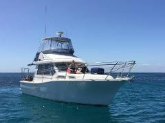 Rottnest Island Dive or Snorkel from East Fremantle