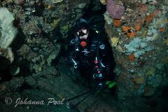 Rottnest Island Night Dive