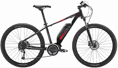 LARGE - Avanti Montari E-Bike  (Nelson)