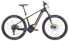 MEDIUM E-Mountain Bike (Nelson)