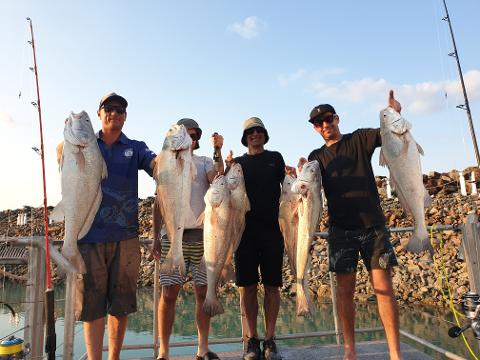 Half Day SHARE Fishing Charter