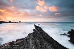 Cape Palliser Photography Workshop - Weekend