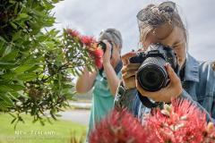 Photo School 1: Taking Control - Auckland