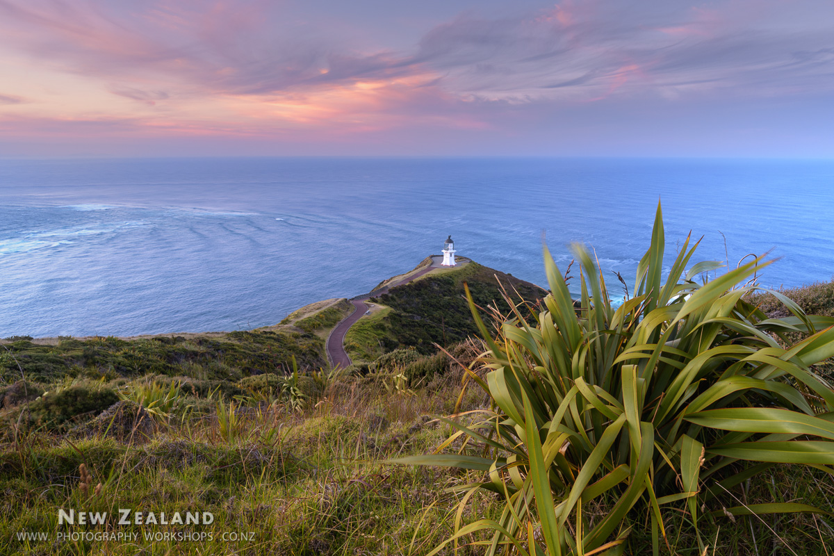 2022 -  Northland & Bay of Islands Photography Tour - 7 days
