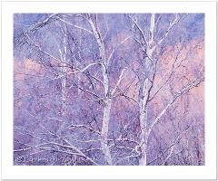 Auction Image: Winter Birch - Change to Image for Auction