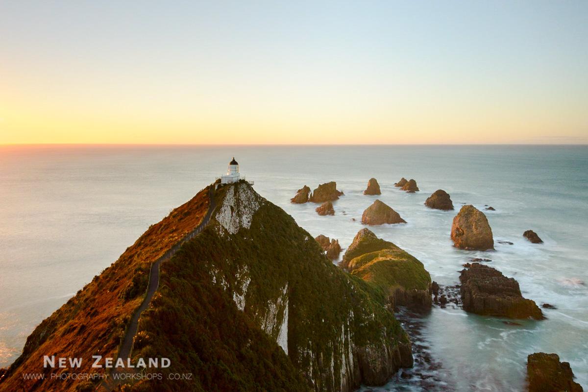 Wild South Island Photo Tour - 7 Days