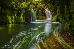 Kaimai Waterfall Photography Workshop - Weekend