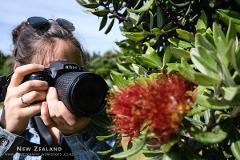 Photo School 1: Taking Control - Wellington
