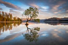 Wanaka Photography Tour (1 day private tour)