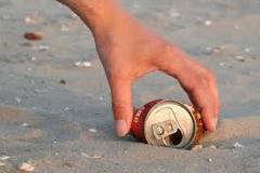 Free tour: Beach Clean-Up of La Ensenada (north coast of Holbox) / Donations