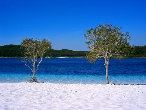 Fraser Island 1 day Package