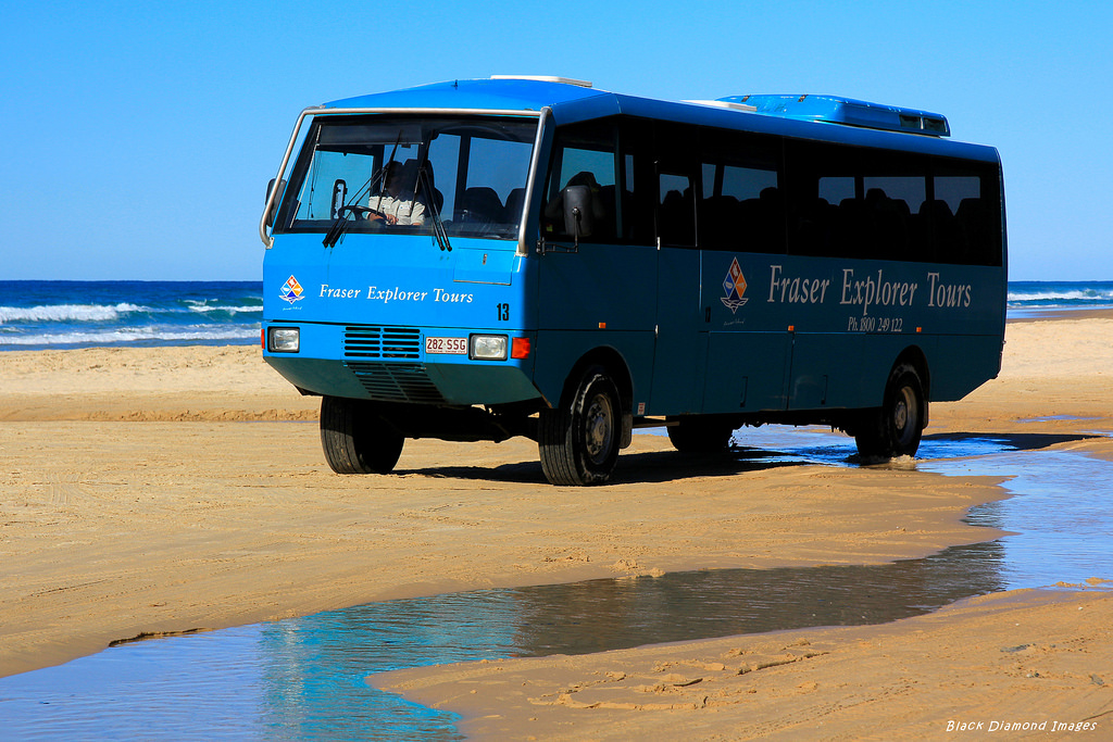Whales & Fraser Island Trails