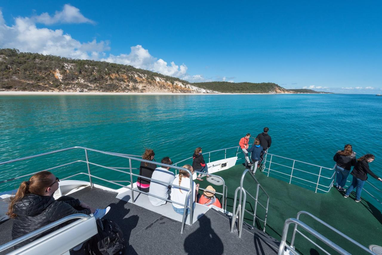 Whales & Lunch @ Fraser Island