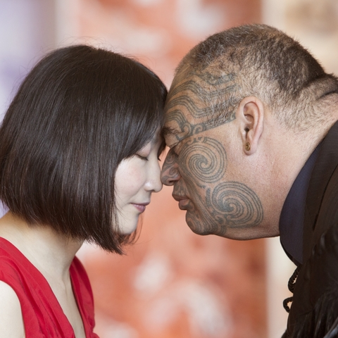 Te Papa Highlights in Mandarin Tour 蒂帕帕亮点之旅 汉语