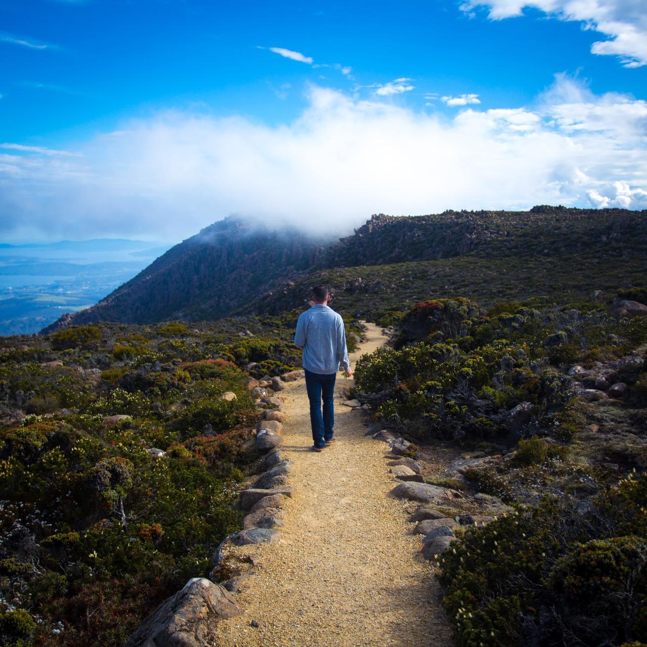 Mt Wellington ONE WAY WALKERS tour