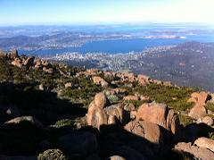 Mt Wellington EXPERIENCE Tour