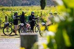 Bike the Wineries - Guided Tour