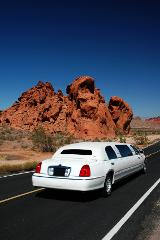 2 hour Famous Landmarks Limo Tour with Photography