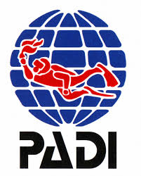PADI Open Water Diver Course photo 1