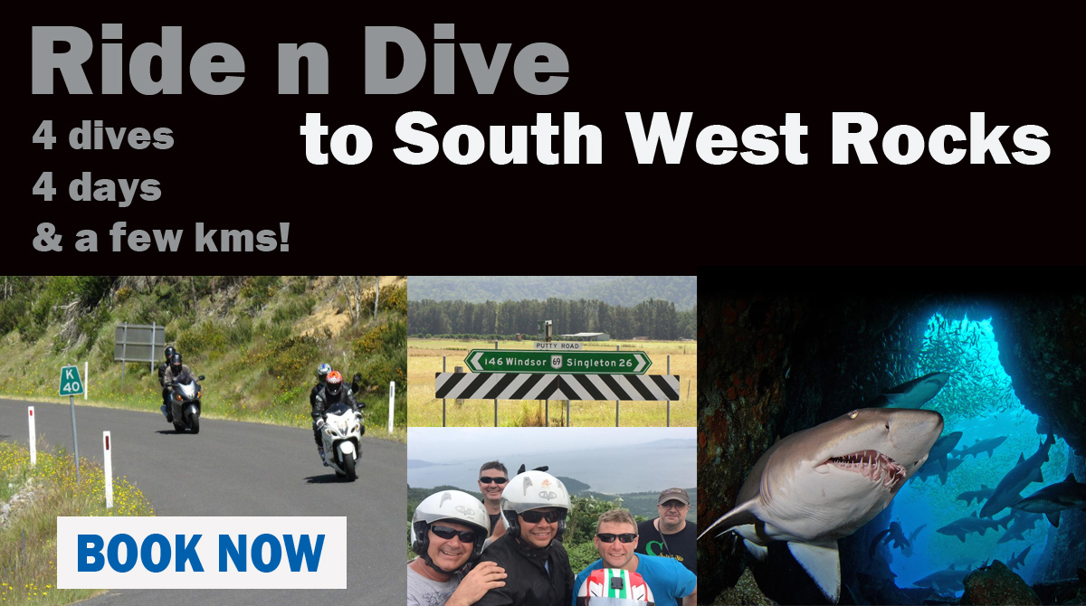 Ride n Dive trip to South West Rocks February 2019