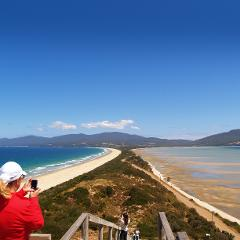 Bruny Island Safaris - Food, Sightseeing and Lighthouse Tour