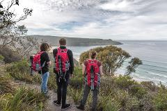 Bruny Island Bushwalking Tour Including Lunch