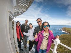 Private Group Tour:  Bruny Island Safaris - Foods, Sightseeing and Lighthouse Tour