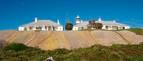 Montague Island Guided lighthouse Tour + Morning Tea With The Seals + Optional Guided Snorkel