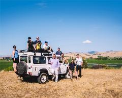 Vineyard Tour by car (Marlborough)