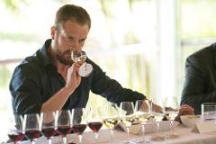 Tailor Made Tasting (Marlborough)