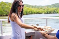 Wooroonooran Safaris Day Tour (Cairns Pick up)