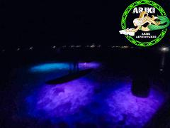Night Paddle & Dinner Tour