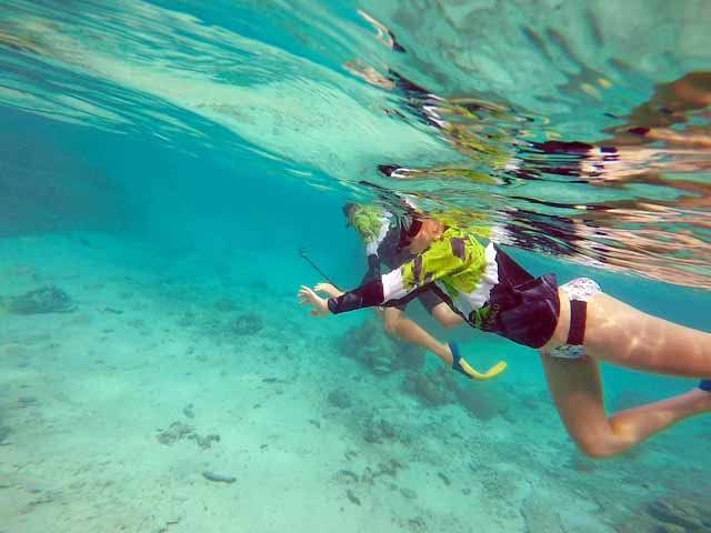 Stand Up Paddleboard & Snorkel Tour