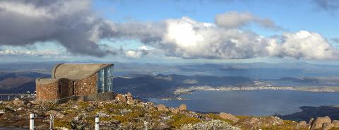 Bonorong and Mt. Wellington: Cruise Ship Combo Tasmania Australia
