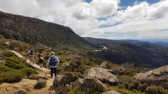 2 Day Option: Mount Field National Park + Cape Raoul, Tasman National Park