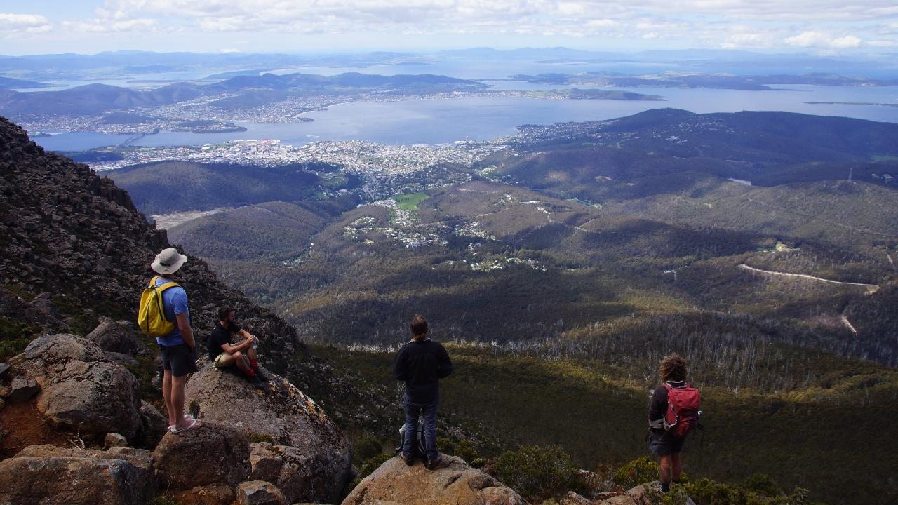 kunanyi/Mt. Wellington Morning Hike + Afternoon Beer & History Walk