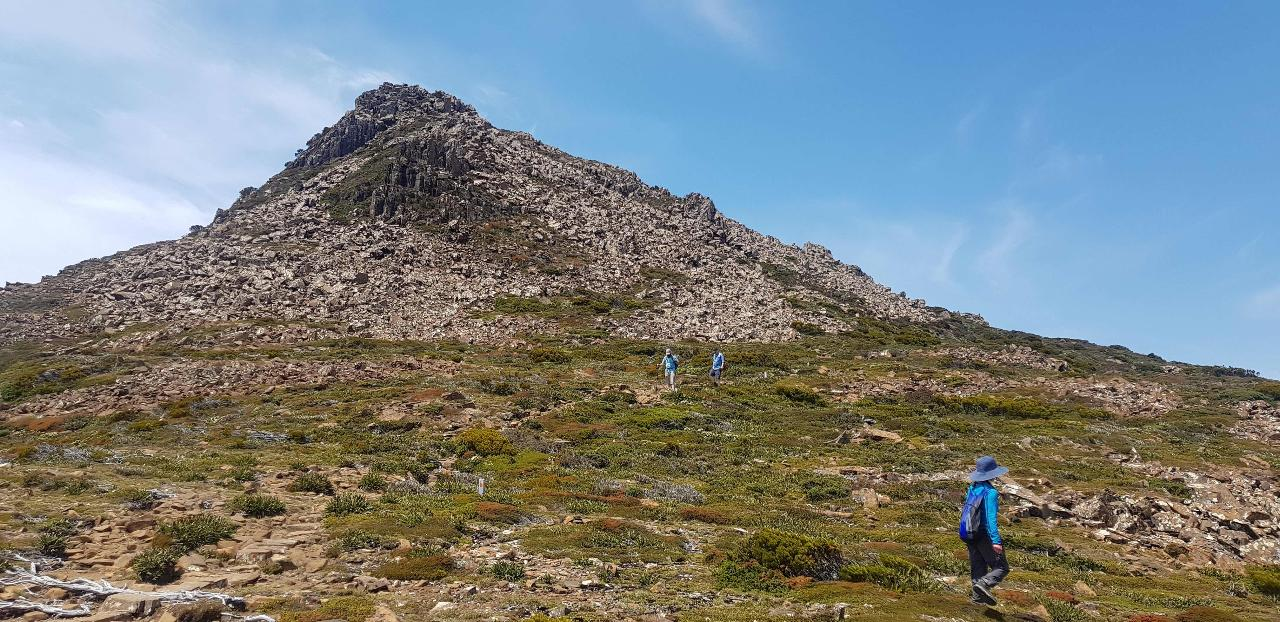 Hartz Peak Hiking Tour - Hartz Mountains National Park