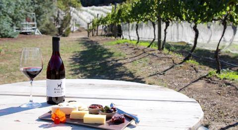 Wine Tour – Coal River Valley Tasmania Australia