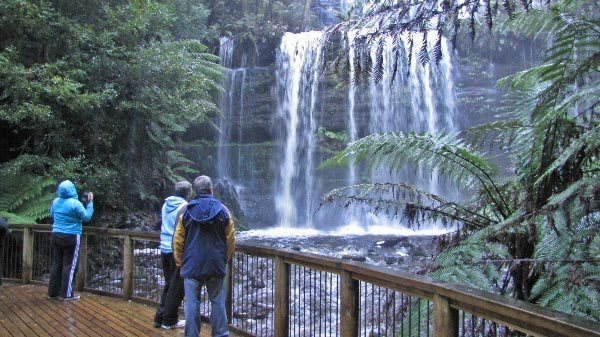 Half-Day Tour: Mt. Field and Russell Falls from Hobart