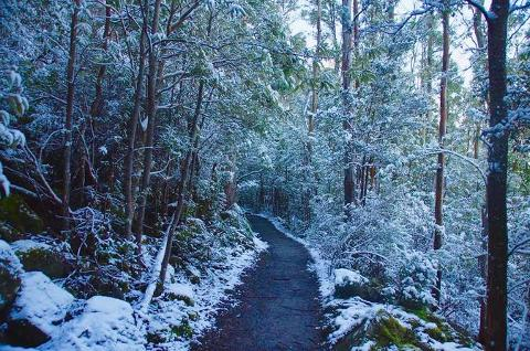 Mt. Wellington Winter Walk Tasmania Australia