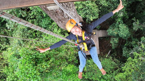 Flight of the Gibbon Chonburi, Zipline Adventure
