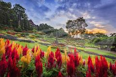 Doi Tung & Royal Villa Half-Day Tour - 08.30am
